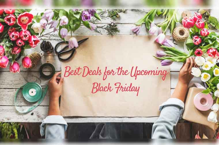 Black Friday shopping deals, discount offers